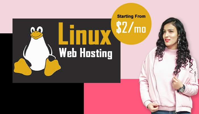 5 Easy ways to turn the Exclusive Web Hosting into Success
