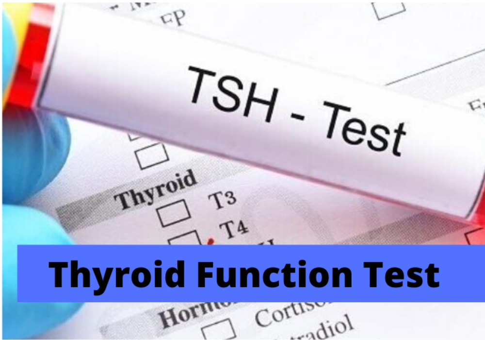 Thyroid Function Test- How Doctors Diagnose your Thyroid Problems