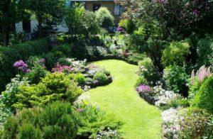 gardening services in Dubai